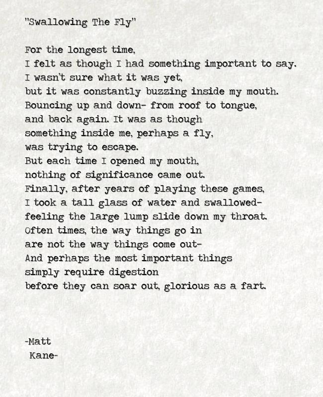 Swallowing The Fly - a poem by Matt Kane